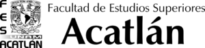 Logotipo-FESA-1024x244